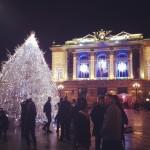 Le sapin de Noël sur la place de la comédie par Laure Valin