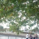 Balade sur les rives près du lac